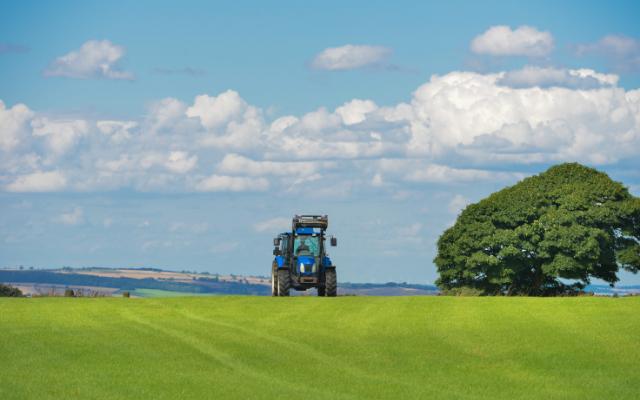 Die Zukunft der Gemeinsamen Agrarpolitik